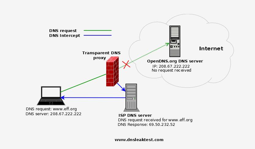 transparent DNS proxy